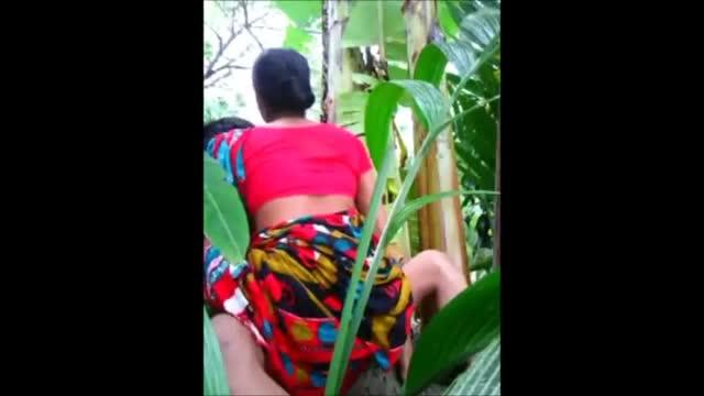 ดูคลิปโป๊สาวไทยรุ่นแม่หุ่นอวบๆแอบไปเย็ดกับชู้ควยโคในป่าข้าวโพด